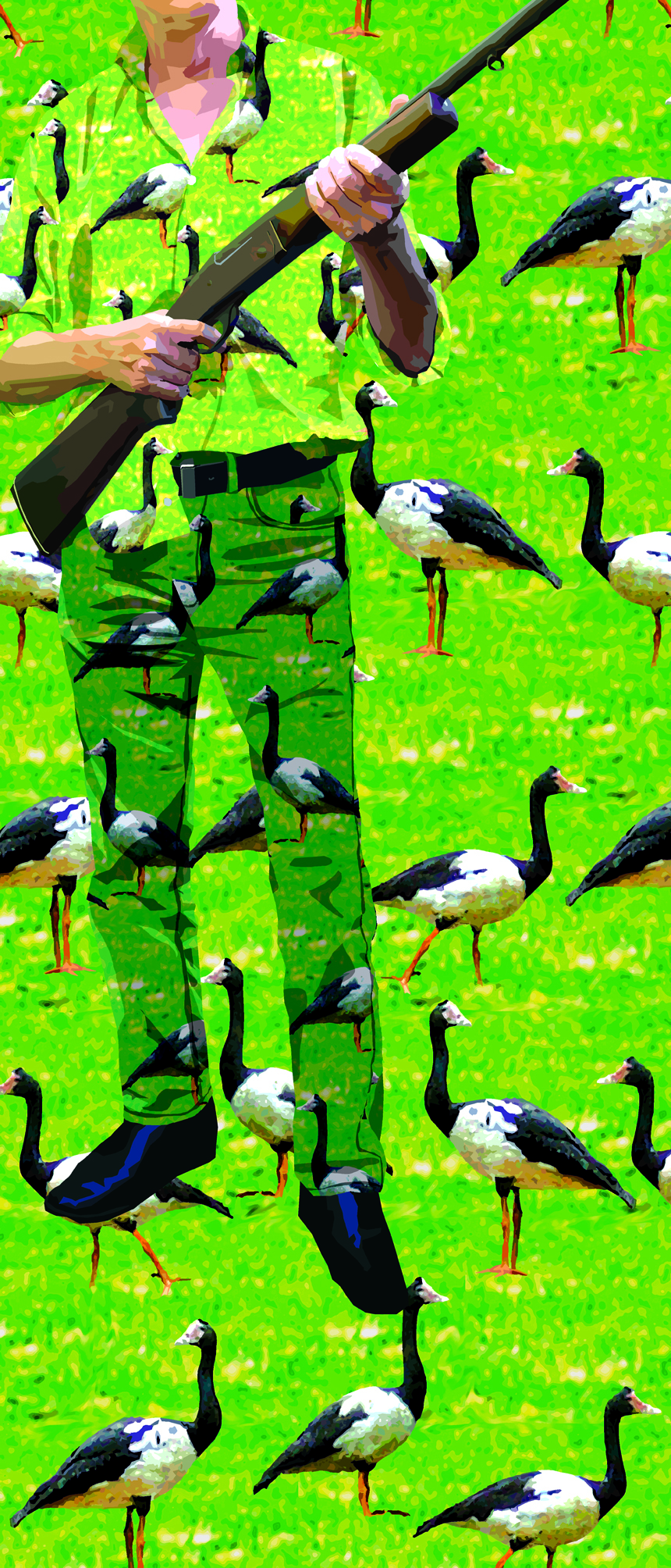 Camoflauge.ChipsMackinolty.jpg
