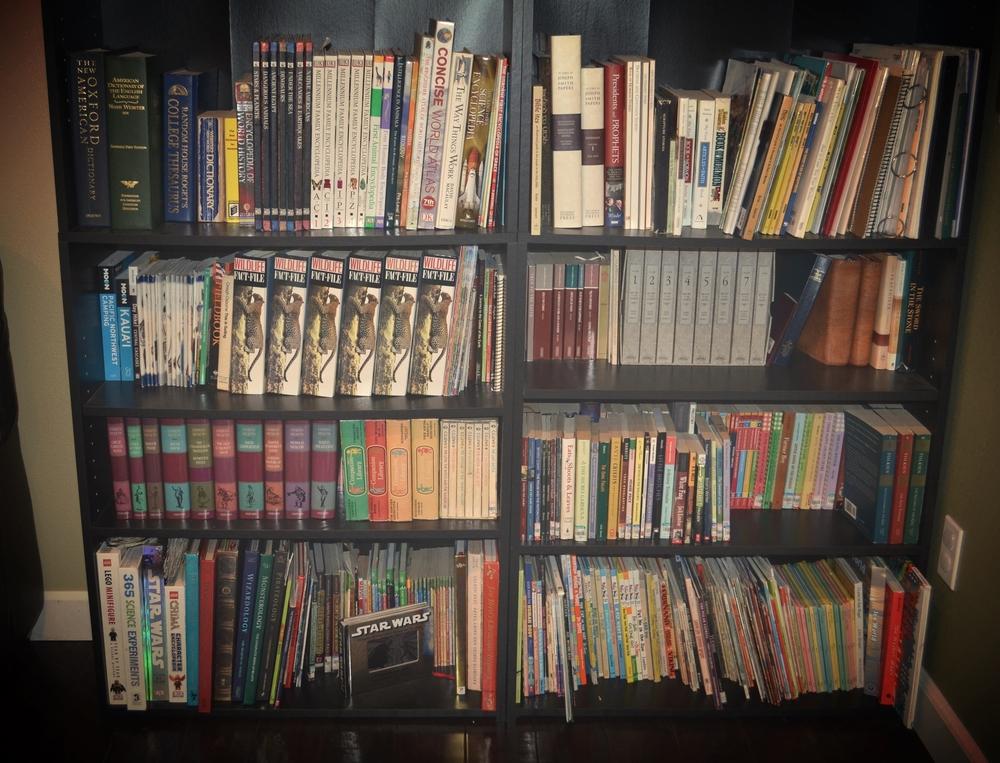 The lower shelves of books.