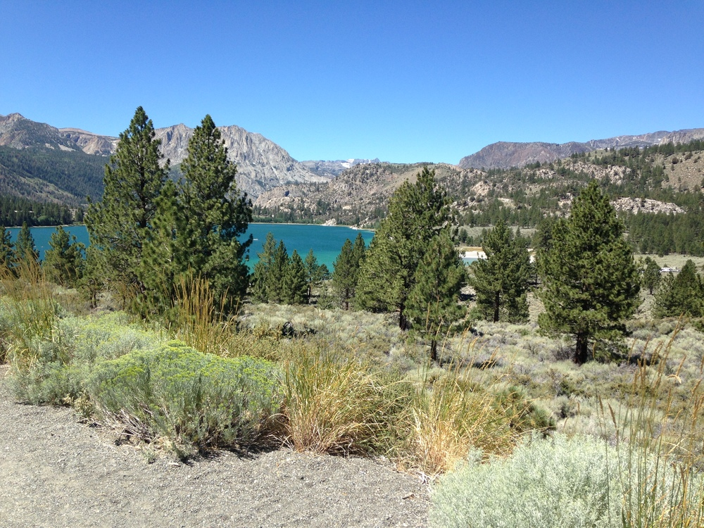 View of June Lake