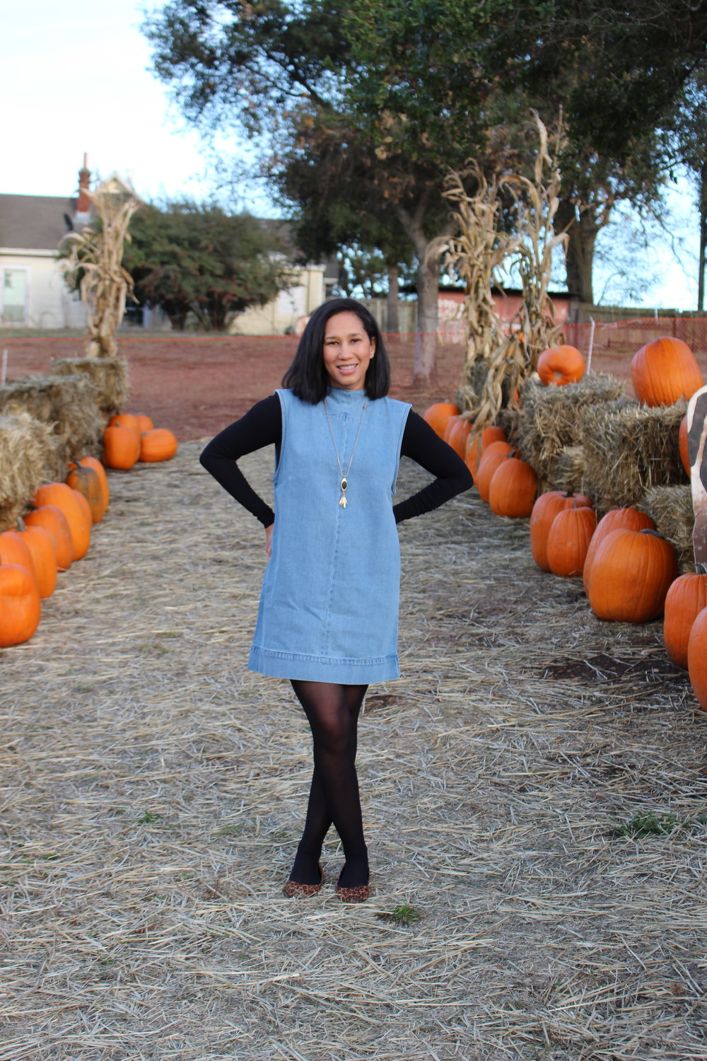 Denim dress for fall