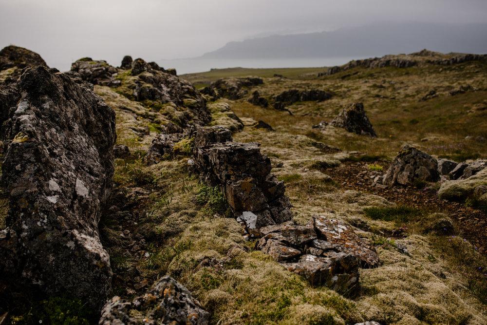 Iceland-WanderingWoo-140.jpg