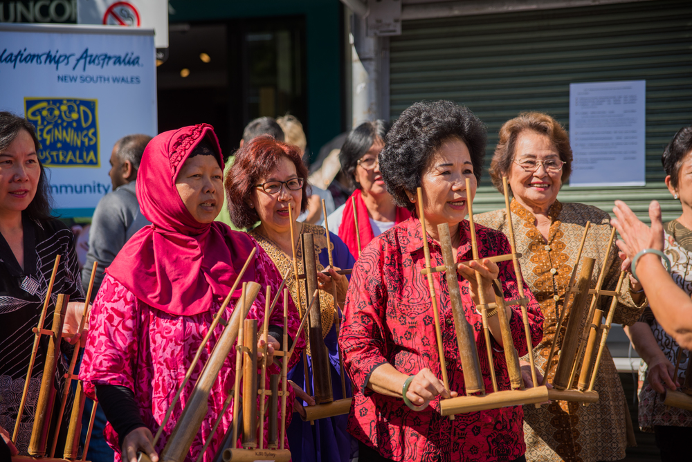 Ryde Cultural Day