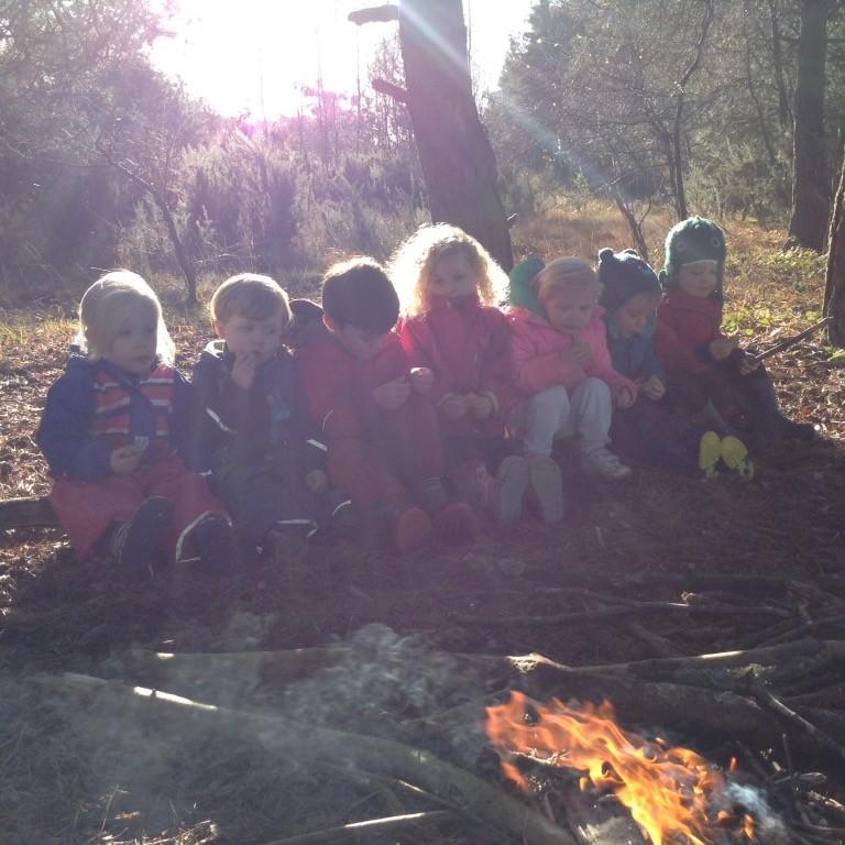 Kids love nature forest nurseries