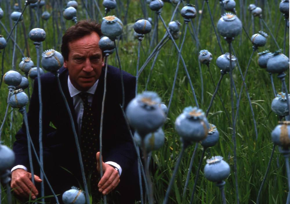 Bill Paterson in poppy field.jpg