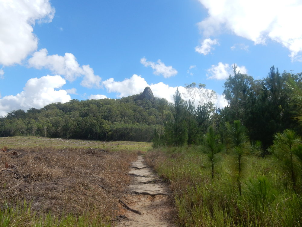 Looking back at Mt Tibberoowuccum