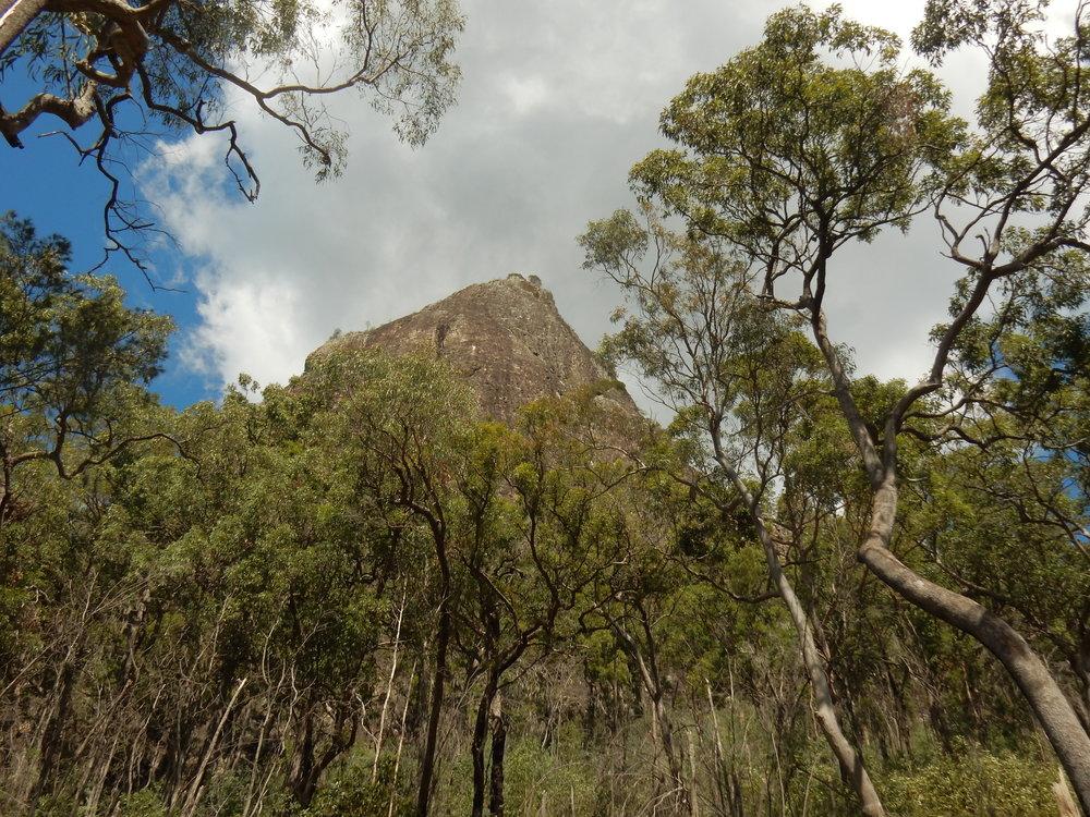 Mt Tibrogargan - 364m high