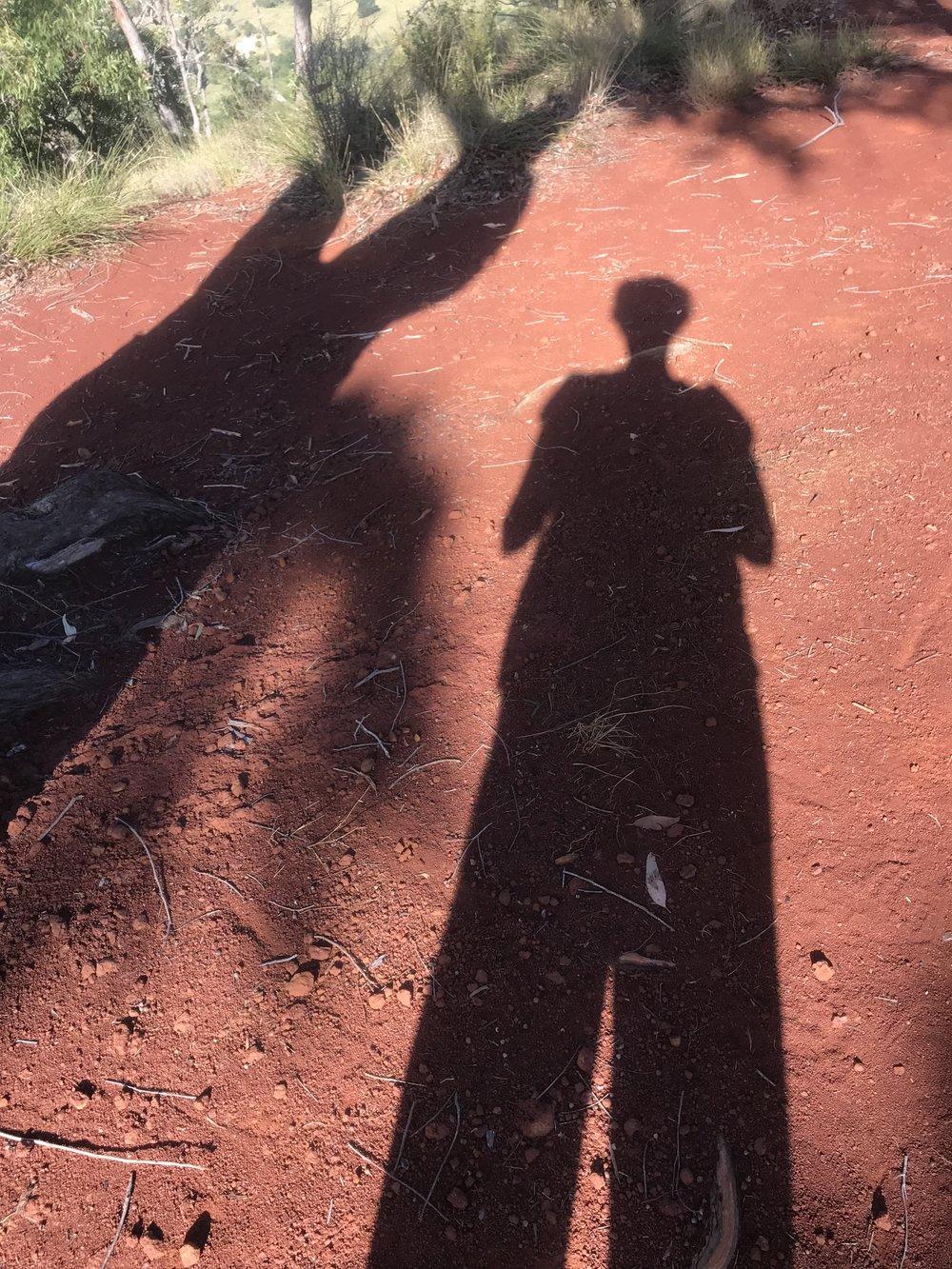 Followed by a shadow!