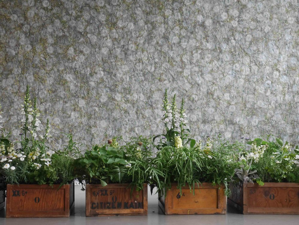 Horticultural Installation