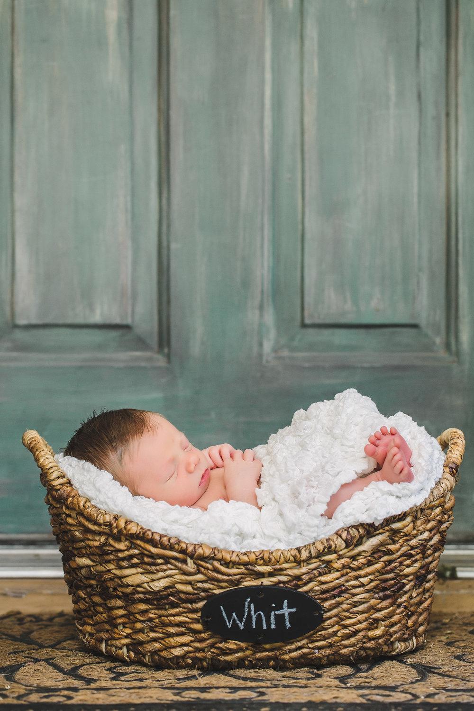 Newborn basket Dallas.jpg