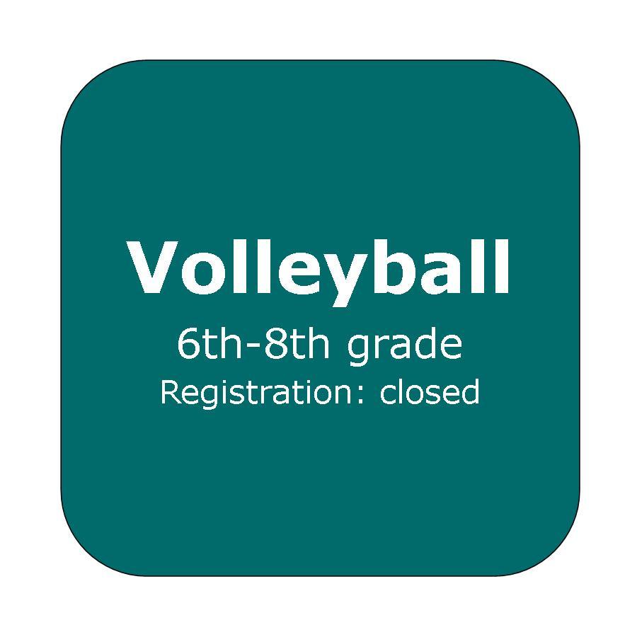 Volleyball button.jpg