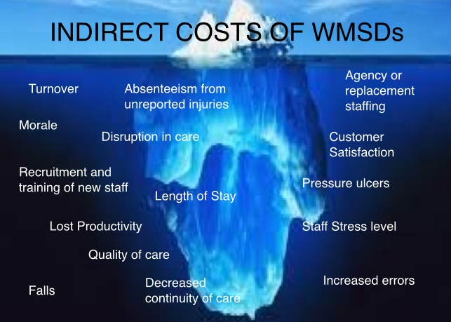 Indirect Costs of WMSD