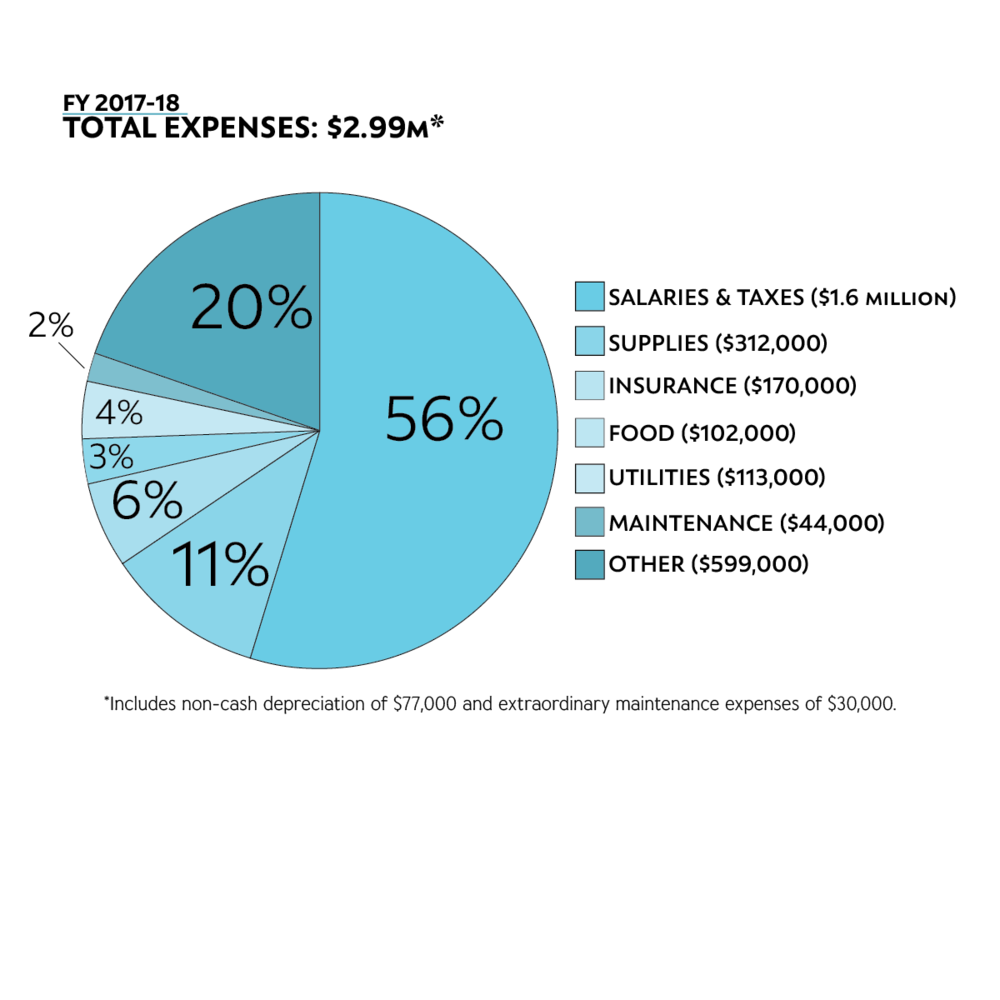 Pie chart depicting WSB Total Expenses of $2.99 million in fiscal year 2017-18.
