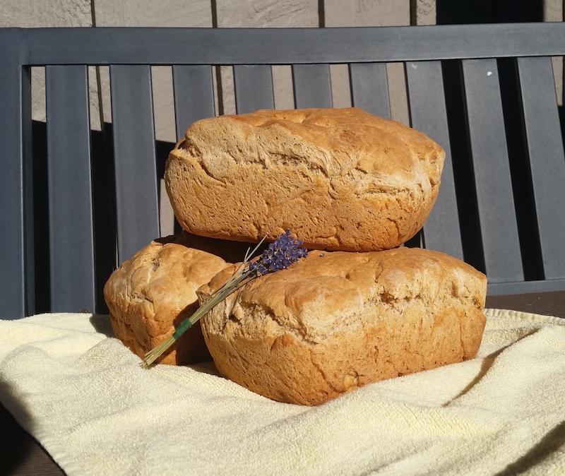 Baking rosemary whey bread