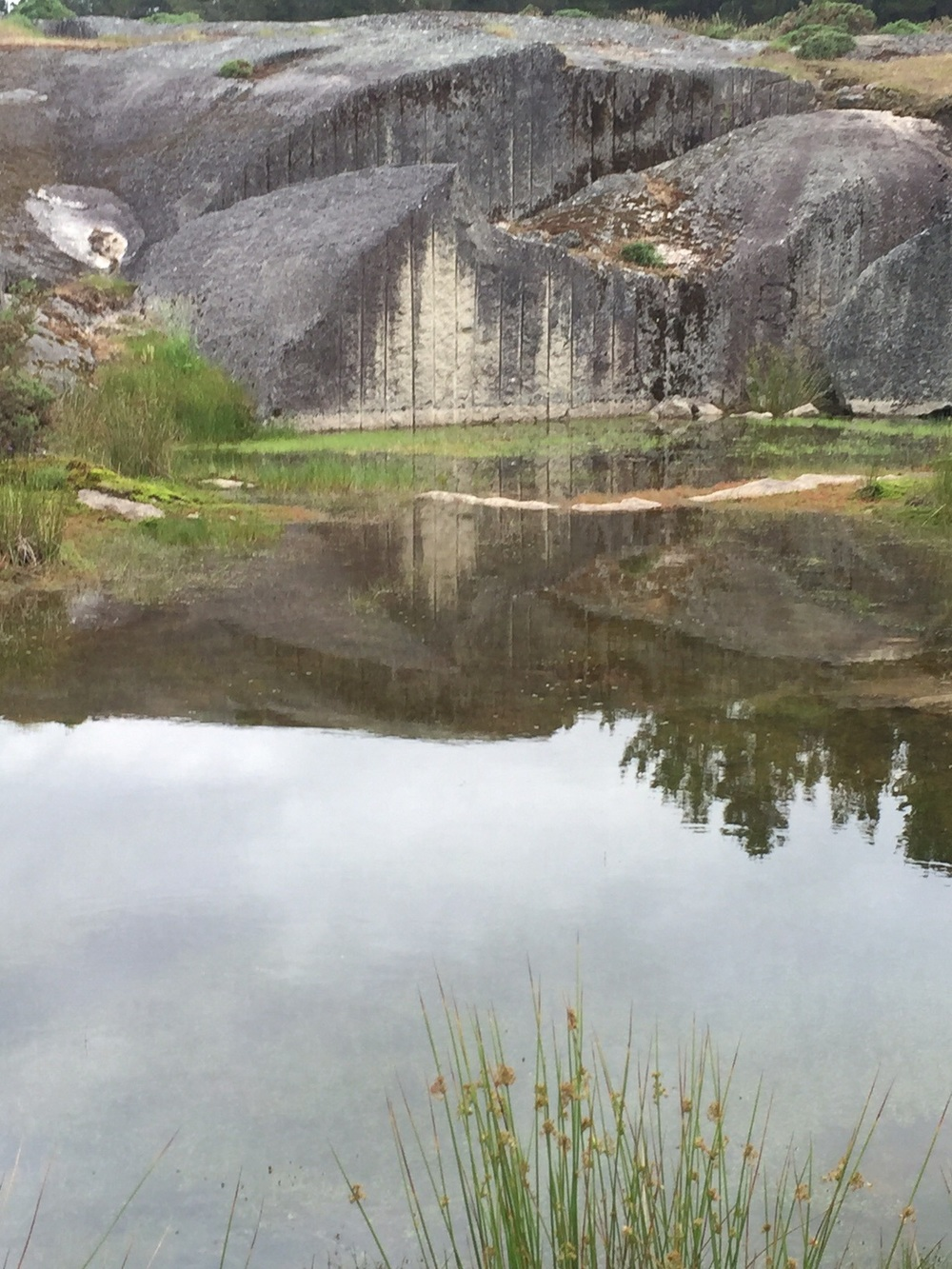 An old quarry