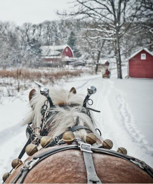 sleigh-bells.jpg