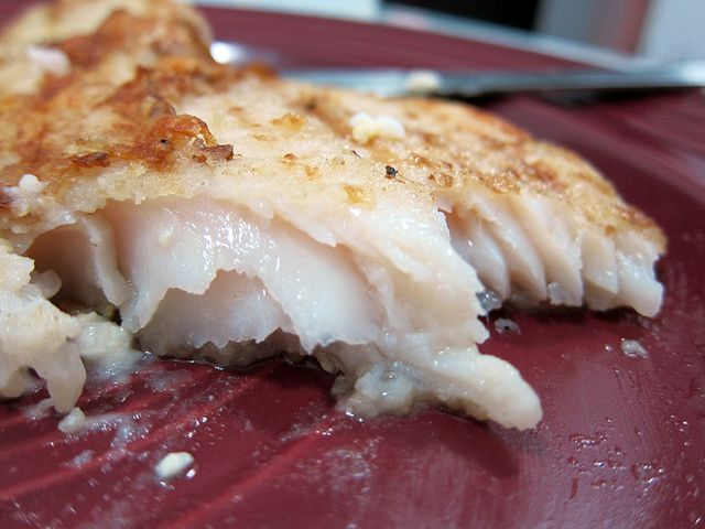 38e1ee133192cd294660442418a6113f--dory-fish-recipe--months.jpg