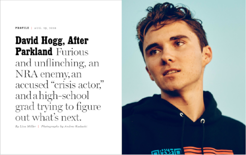 nymag-hogg.png