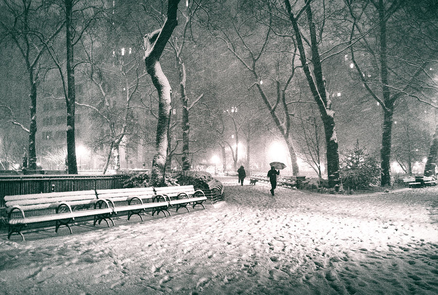 winter-night-new-york-city-madison-square-park-vivienne-gucwa.jpg