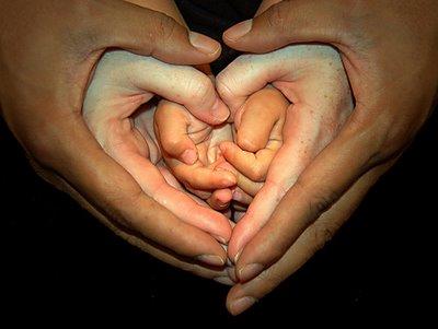beautiful,family,hands,heart,creative,photography,love-c0c1530779057fa2191896e97e986ea0_h.jpg