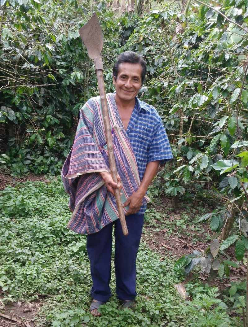 Ananías grows organic, fair-trade coffee in Peru.
