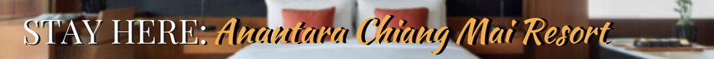 Newsletter Header Anantara Chaing Mai Resort IntroverTravels