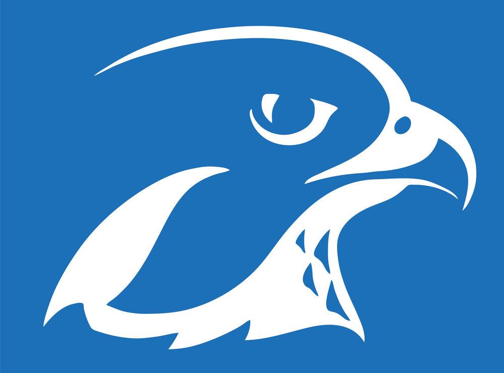 falconhead.jpg
