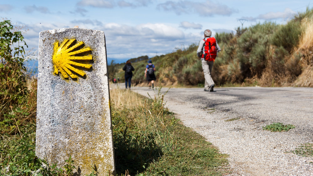 Camino Provisions14.jpg