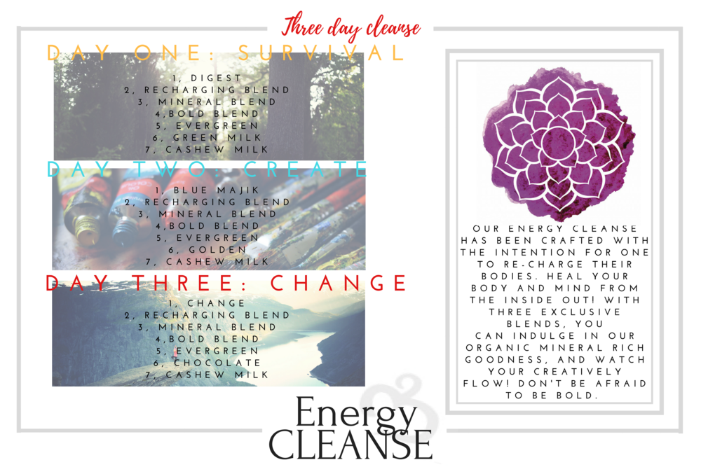Cleanse flyer.png