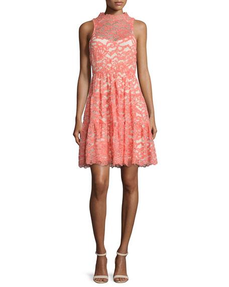 Erin Fetherston Sleeveless Lace Dress.jpg