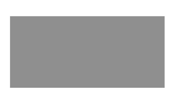 cnn-logo-gray.png