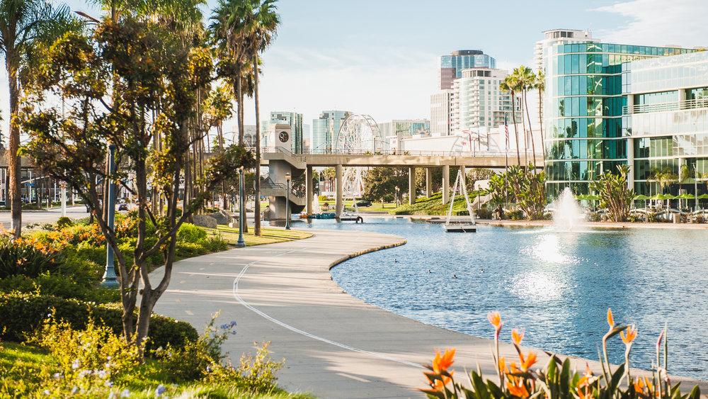 Long Beach Views