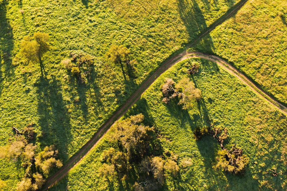 California-Tourism-Drone-Photographer-0002.jpg