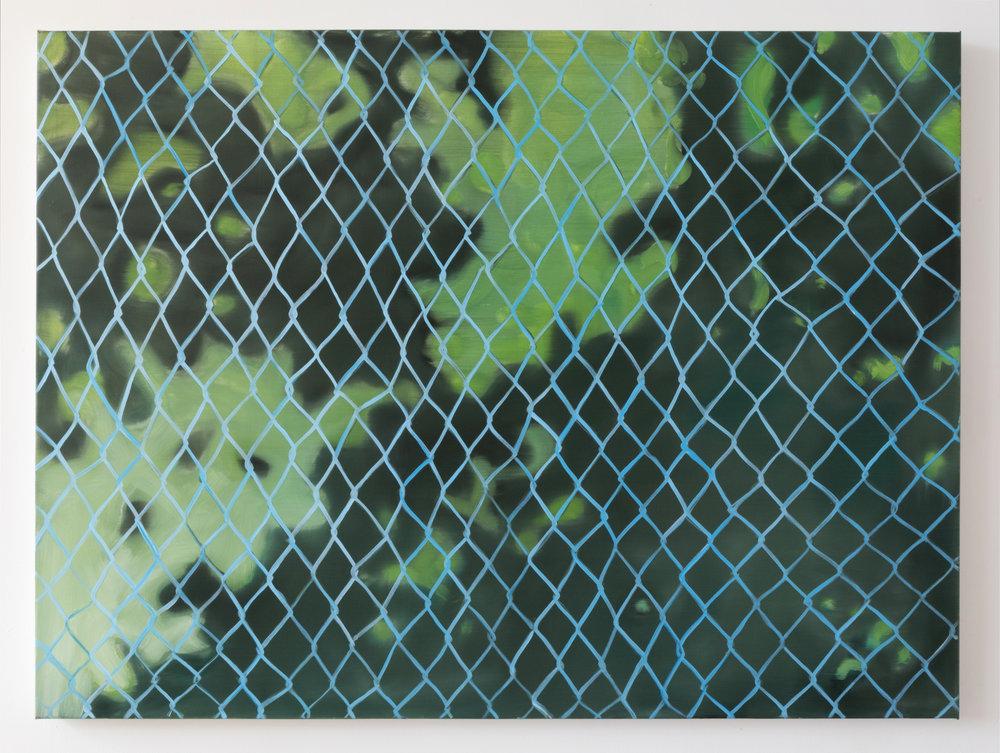 Aglae Bassens, Dappled Fence