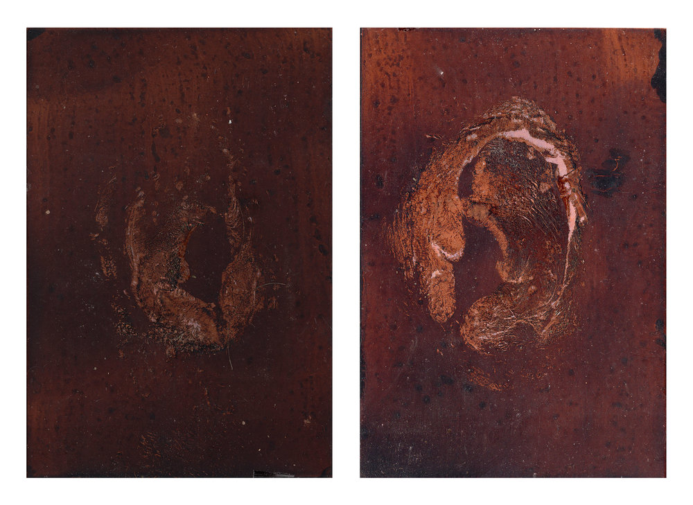 "GENTLE TRANSACTION IX, 2018  Oil of cadaver #58 on copper plate   7"" x 5"" ( 17.8 x 12.7cm)"