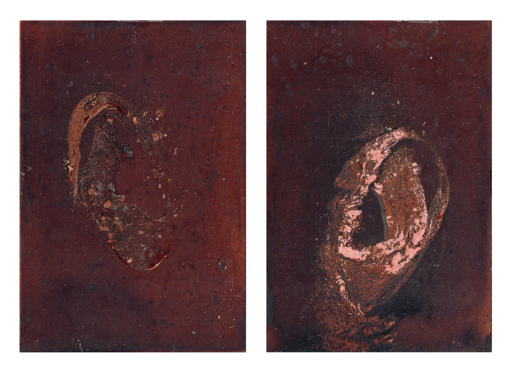 "GENTLE TRANSACTION VII, 2018  Oil of cadaver #45 on copper plate   7"" x 5"" ( 17.8 x 12.7cm)"