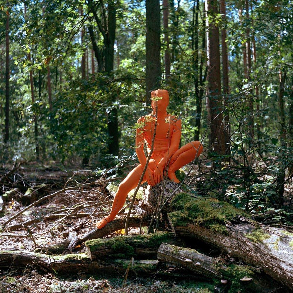 Matthew Morrocco, Mossy Logs