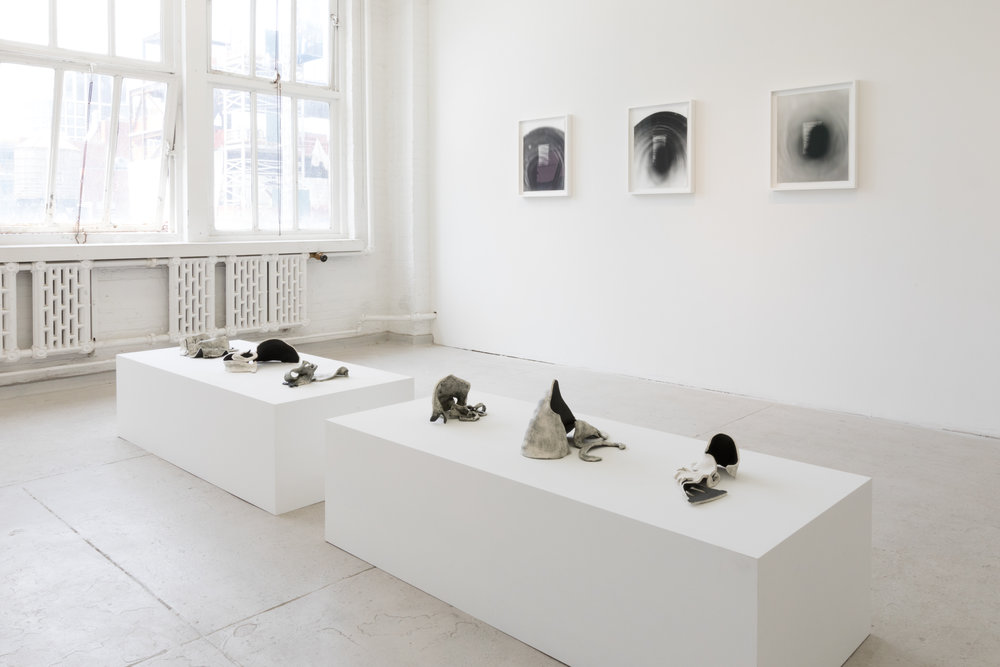 Installation view of  SCIENCE FICTIONS .