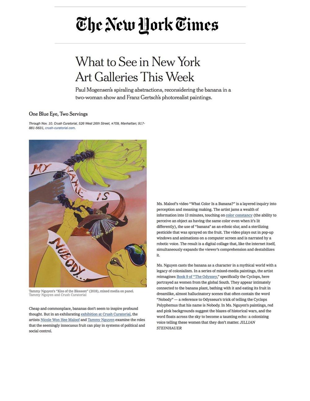 NYT full clip 1 page JPEG.jpg