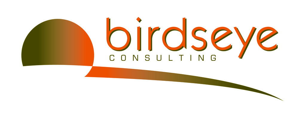 BirdseyeCon_logo-clr+shad_final.jpg
