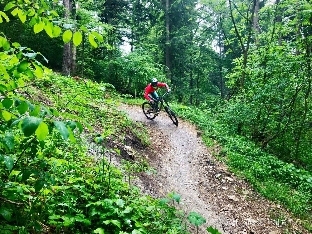 Albstadt_Bikepark_6.jpg