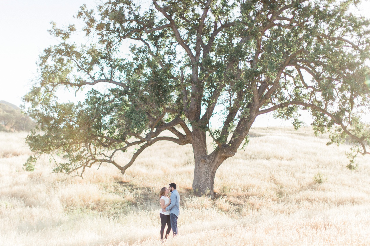 Malibu Creek Engagement