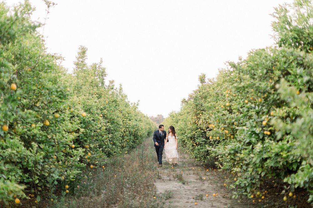 Hartley-Botanica-Wedding-M-F-Lucas-Rossi-783.jpg
