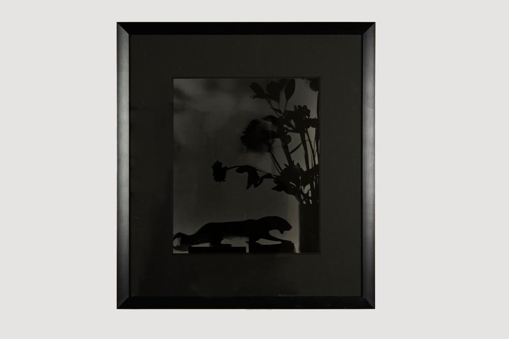 Hernan Bas  untitled 2  2016 Silver gelatin print 18 x 16 1/2 inches