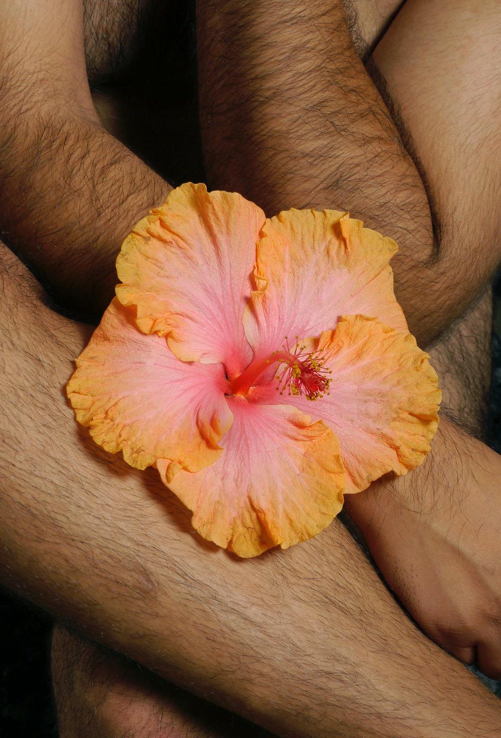 Floral Lanscape