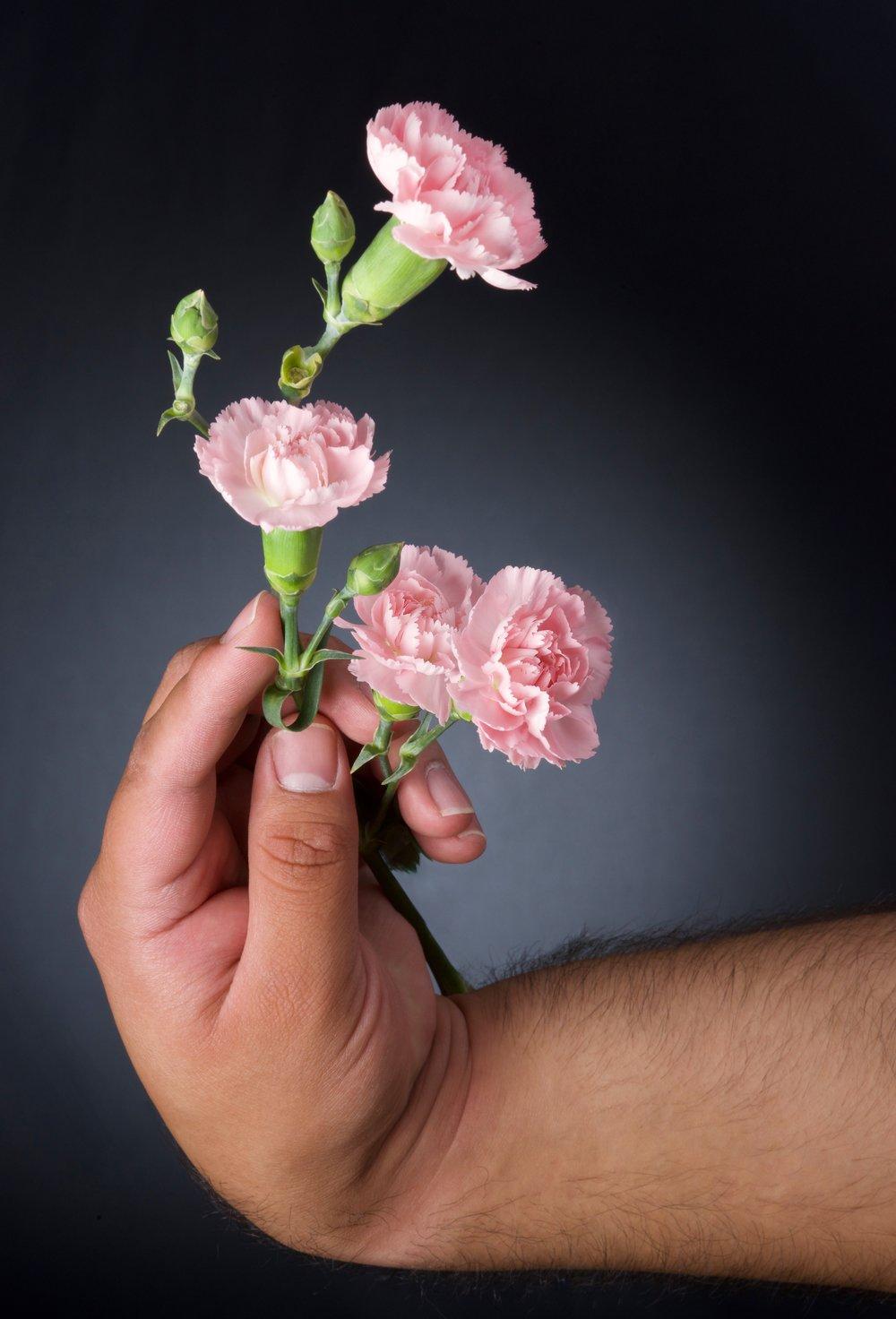 Pink Incarnate