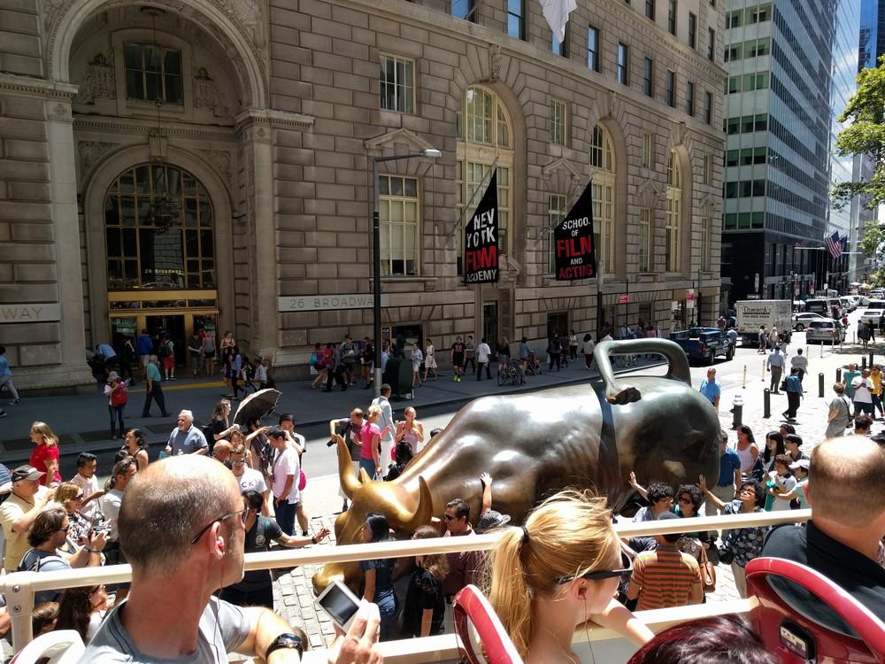 The bull!