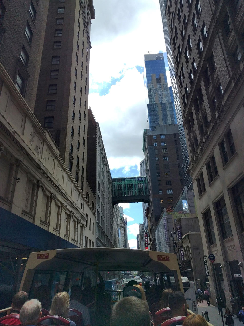 This bridge was made because people believed that New York would be a city in the sky, and that you could get from place to place without having to go down to the street. I thought it was interesting that the idea didn't work there, but it worked in Charlotte, NC.