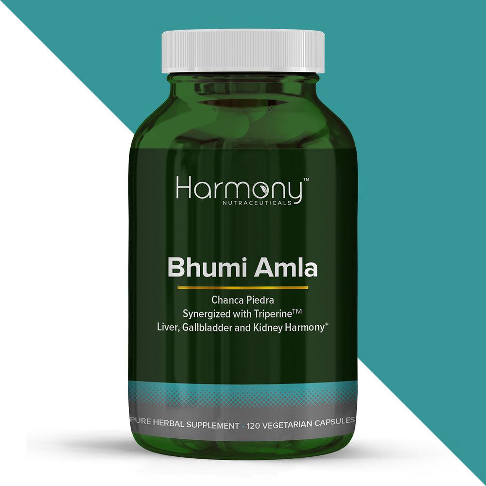 BhumiAmla-color_block.jpg