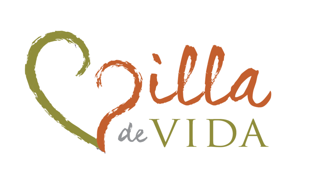 2017 Overall Event Sponsor   www.villadevida.org   We're building residential communities for adults with special needs to live and explore life fully.