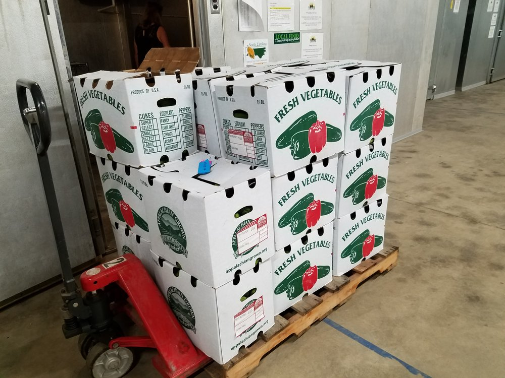 Boxes of fresh pickling cucumbers ready to go to market.